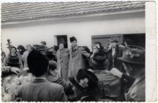 Mato Marosevic - nečiji svatovi