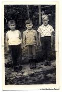 Stjepan Šarić, Marko Živković i Pero Pandurović